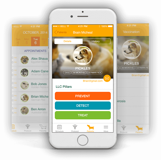 Pet Care App Development Company