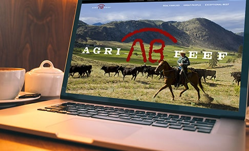 Agri Beef Ecommerce Platform Success Story