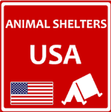 animal pet shelters usa android app