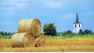 How Much Does A Bale Of Hay Weigh?